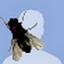 https://gp3.googleusercontent.com/-hVviiuLEJRw/AAAAAAAAAAI/AAAAAAAAAAA/V8Cm4ncogzI/s48-c-k-no/photo.jpg?sz=64